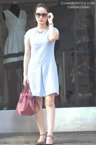 Váy công sở (1)