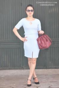 Váy công sở (2)