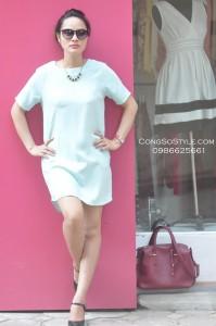Váy công sở (5)