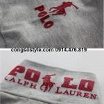 Áo thun nam Polo (2)