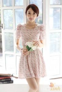 Váy xinh (4)